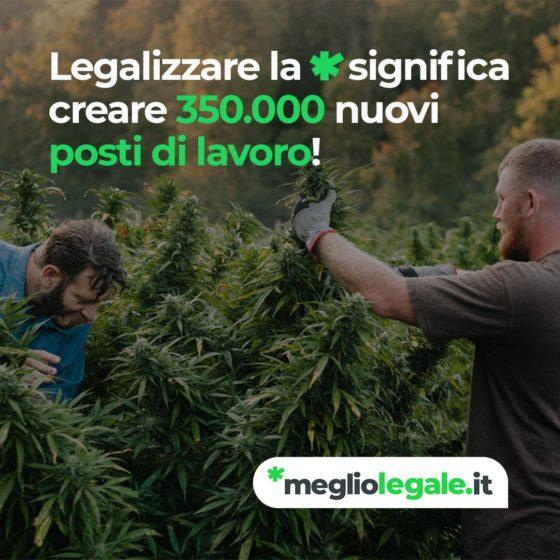 Legalizzazione: 350K posti di lavoro