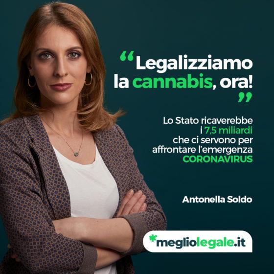 Legalizziamo la cannabis, ora!